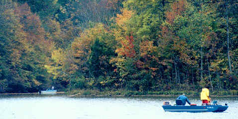 Henry county web lake jericho for Do senior citizens need a fishing license